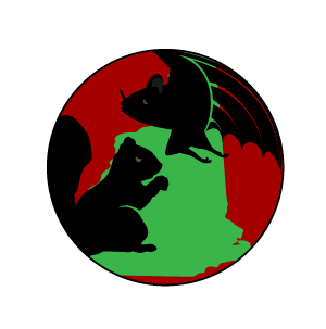 Bat Flying Squirrel Exclusion Graphic Logo for New Hampshire Bat Control